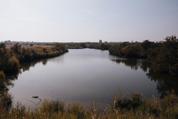 Autumun paisaje con un río.