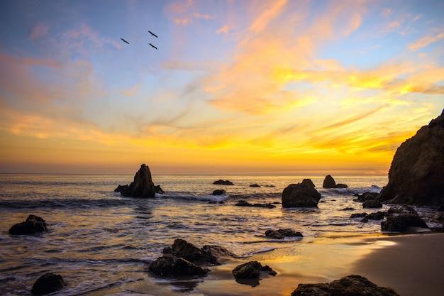 Aves volando sobre la orilla del océano durante una hermosa puesta de sol