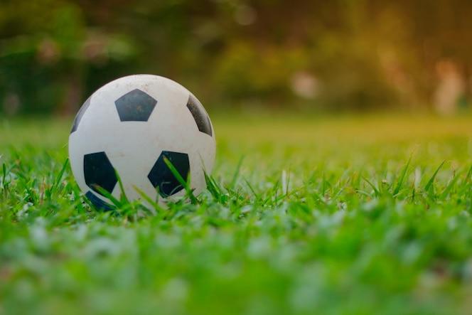 Balón de fútbol puesto en el césped