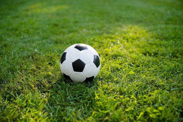 Balón de fútbol sobre césped verde en el parque