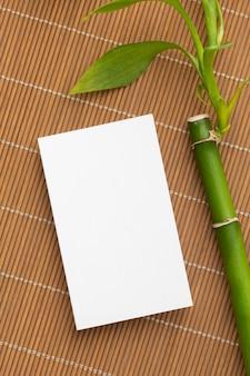 Bambú con hojas y espacio de copia vacío.
