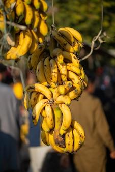 Las bananas frescas se exhiben en el mercado