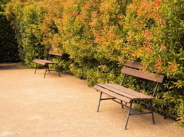 Banco de madera y fondo de pared de hojas verdes y marrones de otoño