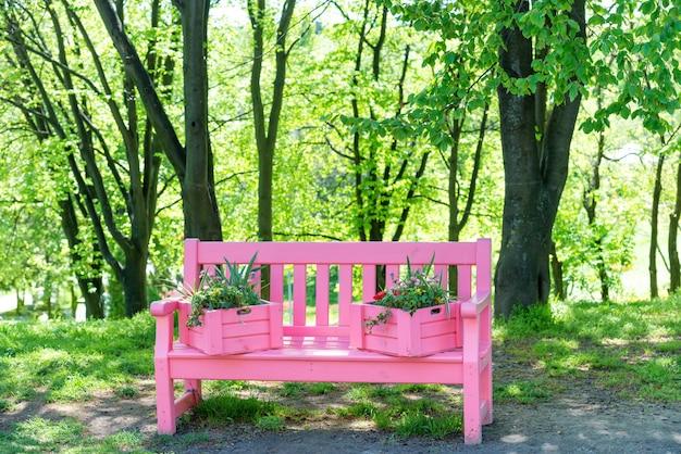 Banco rosa con flores en el parque verde de la primavera