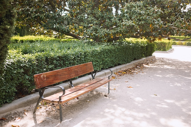 Banco vacío en el parque