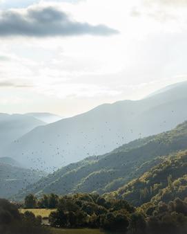 Bandada de pájaros volando en los pirineos de montaña en el verano