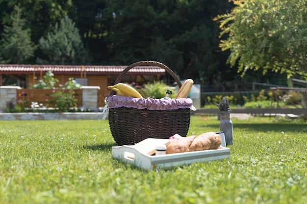 Bandeja y cesta de comida fresca sobre hierba verde.