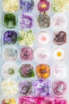 Bandeja con flores congeladas en cubitos de hielo