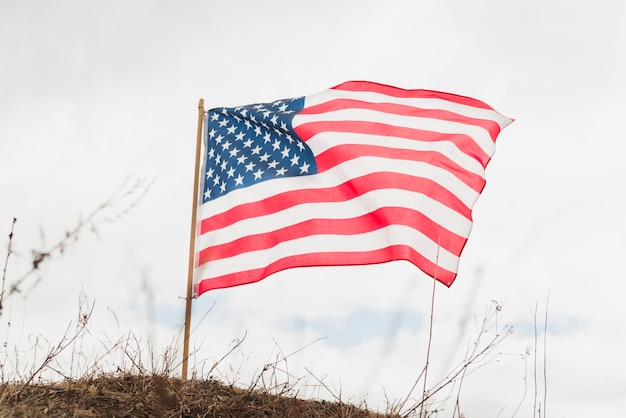 Bandera americana en la colina