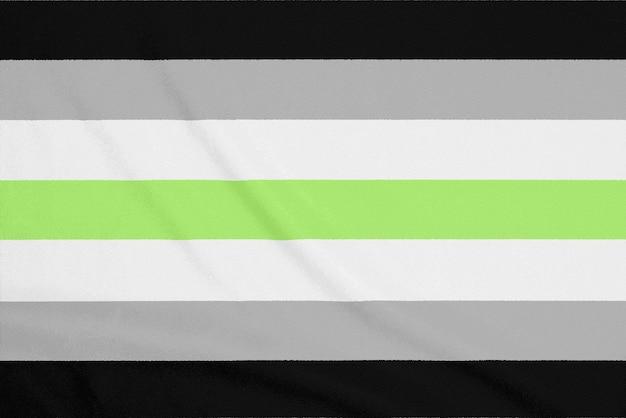 Bandera de la comunidad lgbt agender