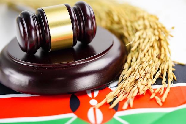 Bandera de kenia y juez martillo con grano de oro