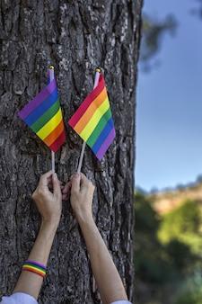 Bandera lgbt en el campo. orgullo. concepto de libertad