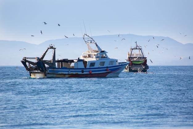 Barcas trwler con gaviotas en ibiza formentera.