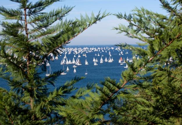 Barcolana, la regata de trieste