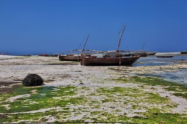 Barcos durante la marea baja en zanzíbar, océano índico