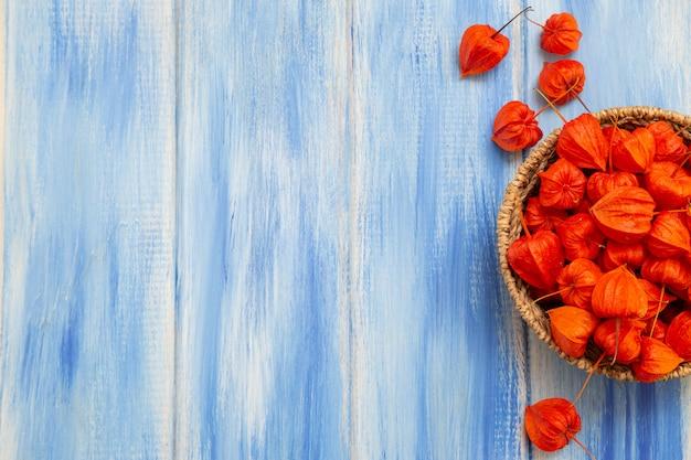 Bayas de color naranja brillante physalis en una mesa de madera azul