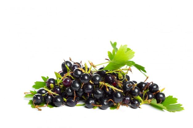 Bayas de grosella negra con hoja verde. fruta fresca, aislada