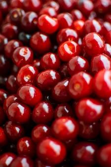 Bayas maduras de cereza roja.