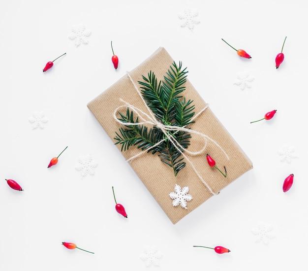 Bayas que mienten alrededor de regalo de navidad