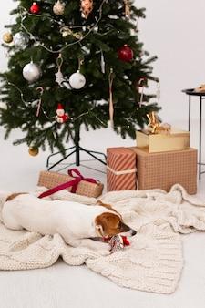 Beautiul navidad en concepto de casa