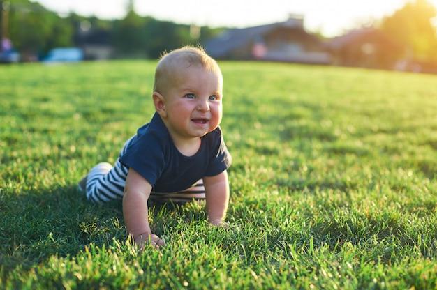 El bebé se está arrastrando en un césped verde en la luz del sol de la mañana.