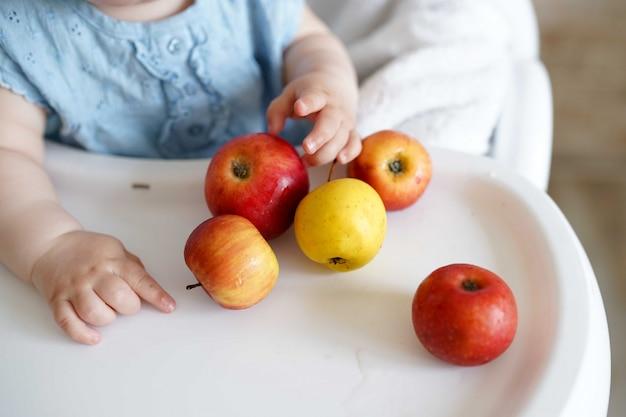 Bebé comiendo fruta. manzanas amarillas y rojas en las manos de la niña en cocina soleada.