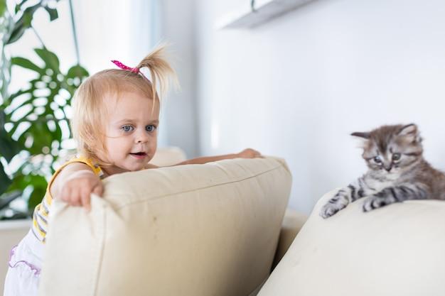 Bebé jugando con un gatito en el sofá