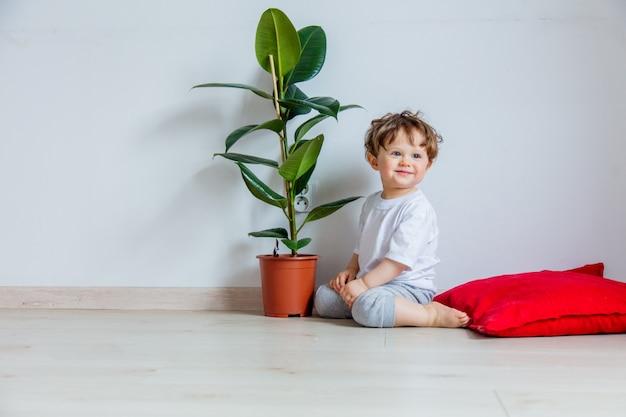 Bebé con planta verde sentado en un piso cerca de una pared blanca