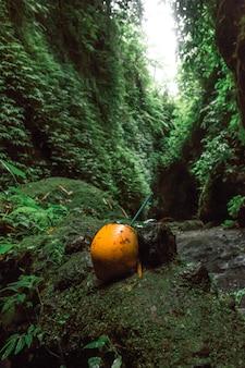 Bebida de coco naranja se encuentran en cascada en la selva balinesa