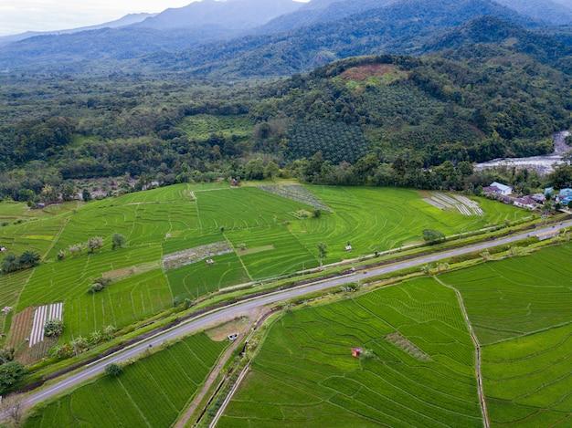 Belleza natural de bengkulu de fotos aéreas en el momento en el bosque