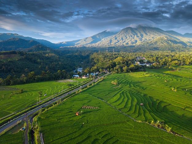 La belleza natural de bengkulu a partir de fotos aéreas en el momento en los campos de arroz.