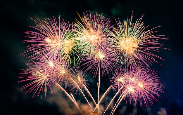 Bellos coloridos fuegos artificiales en el lago urbano para celebrar en la oscuridad