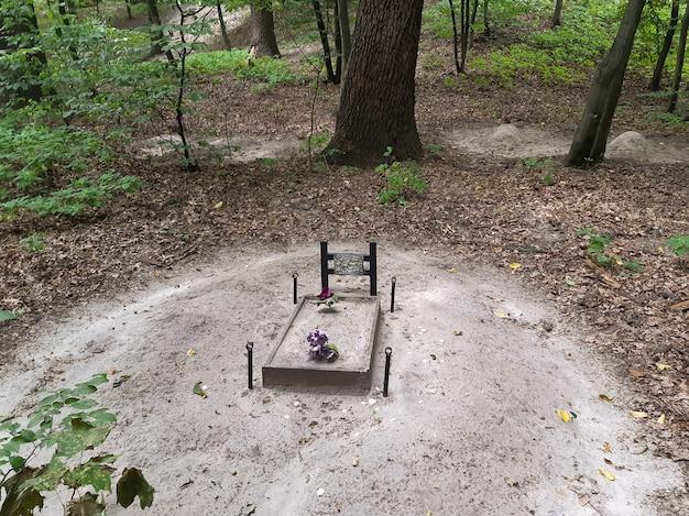 En el beneficio está la tumba de una mascota, un perro o un gato. detrás de ella en el fondo hay varias tumbas más.