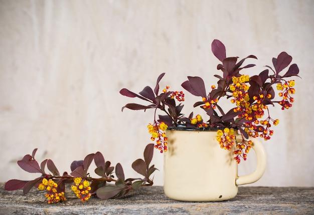 Bérbero floreciente en la taza vieja en una mesa de madera