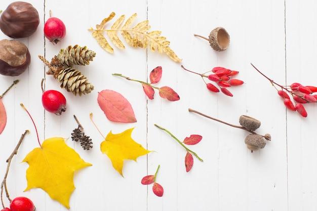 Berriaes rojas y hojas de otoño sobre fondo blanco de madera