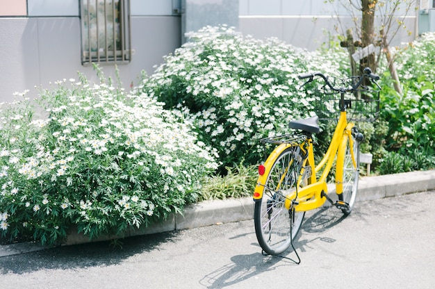 Bicicleta amarilla en el parque en japón