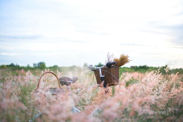 Bicicleta con cesta y guitarra de flores en pradera vintage, selecto y enfoque suave.