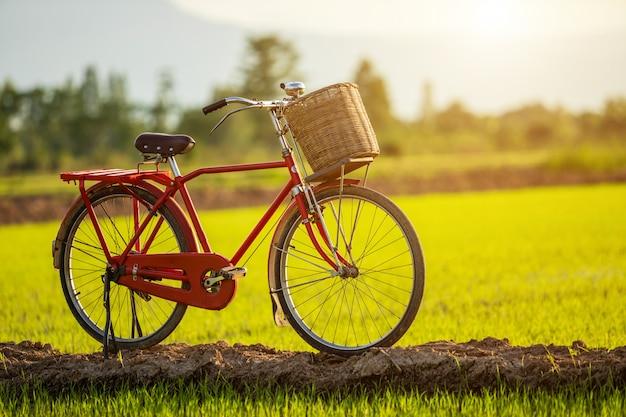 Bicicleta clásica de estilo rojo japón en el campo verde