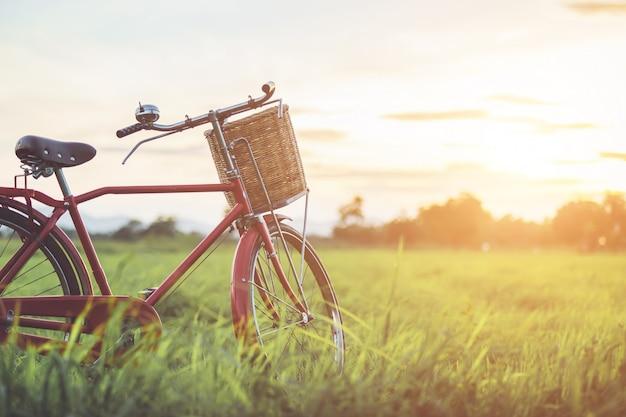 Bicicleta clásica roja estilo de japón en el campo verde