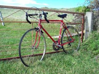 Bicicleta de color rojo y puerta de hierro - diez especies de curación