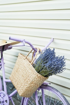 Bicicleta lila con una canasta de lavanda en el patio