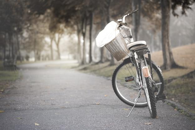 Bicicleta negra en la carretera en el parque, tono vintage.