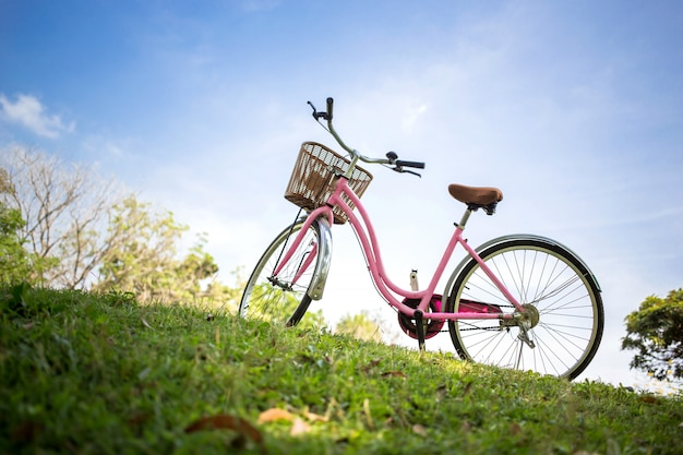 Bicicleta rosa en el parque