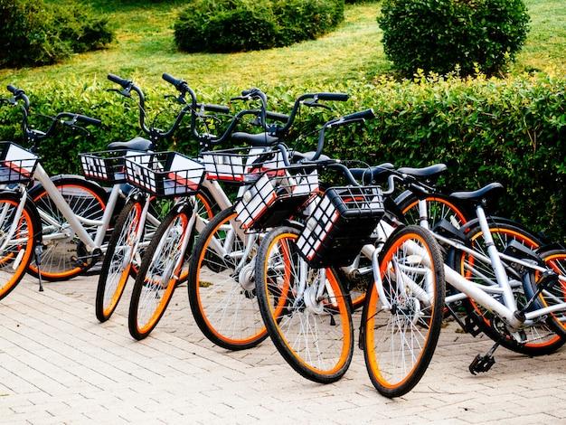 Las bicicletas están disponibles para alquilar para recorridos por la ciudad.