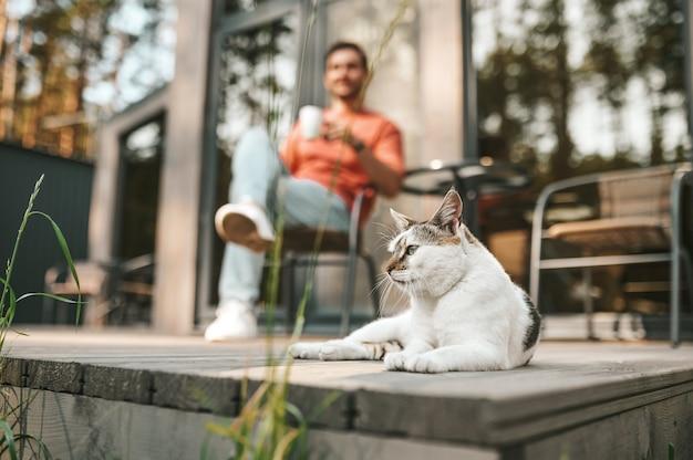Bienestar. gato acostado en el porche mirando al lado y el hombre bebiendo té detrás en un buen día de otoño