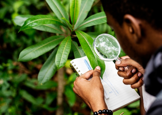 Biólogo en un bosque