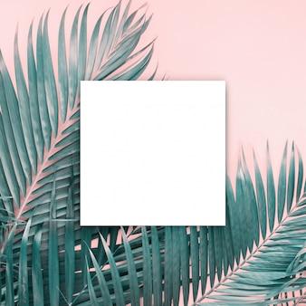 Blanco papar blanco folleto maqueta aislado blanco