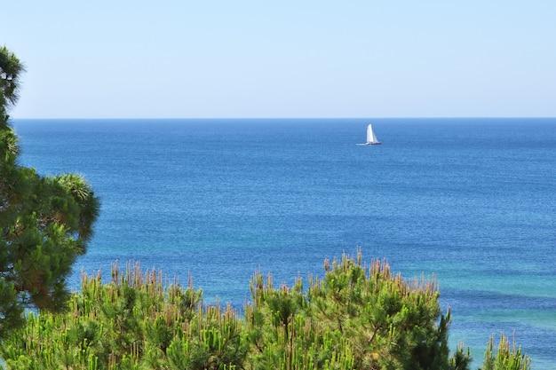 Blanco velero en el mar.