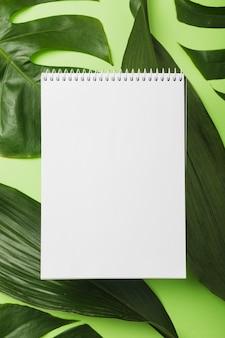 Bloc de notas espiral en blanco sobre hojas verdes sobre fondo