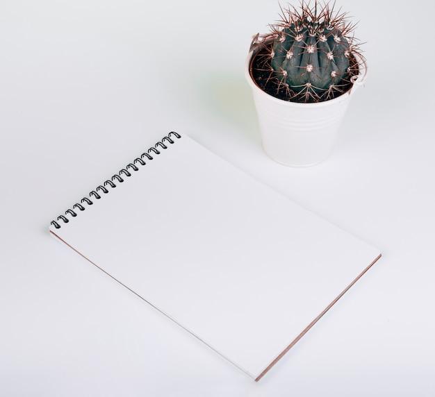 Bloc de notas de espiral en blanco cerca del cubo de cactus sobre fondo blanco